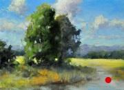 stjohn.Marshlands.6X8-oil.375-1