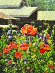 stjohn.Poppy-Season.24X18-oil.1950