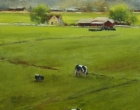 Dairy-Land-Daybreak.16X12-oil.975.stjohn