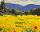 stjohn.Acres-of-Sunflowers.8X8-oil.525-sold