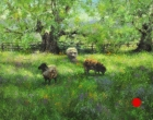 stjohn.Spring-Flowers-and-Wooly-Sheep.18X24-oil.2950